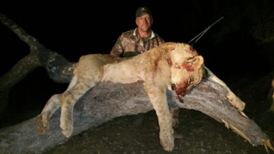 African Hunting Safaris Szekely Hunt