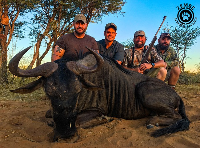cape buffalo hunting, Home